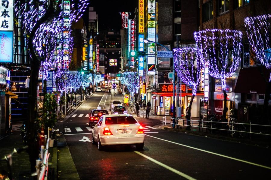 Árboles iluminados con luces de Navidad