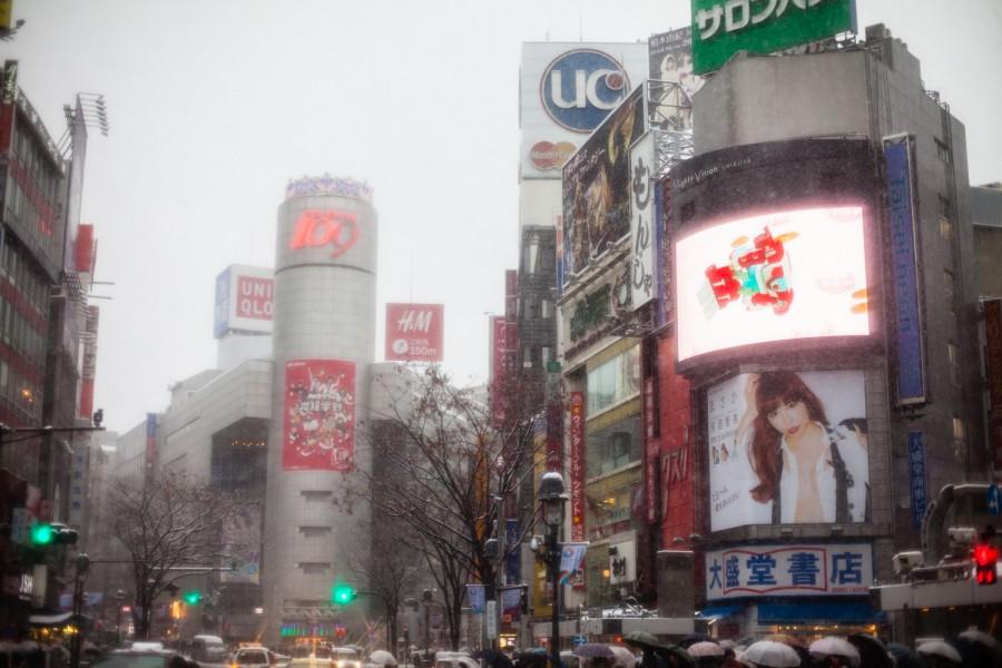 Shibuya nevada
