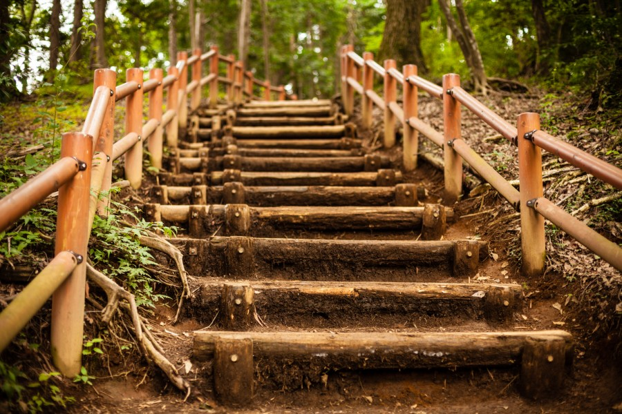 Subiendo a la cima del monte Takao