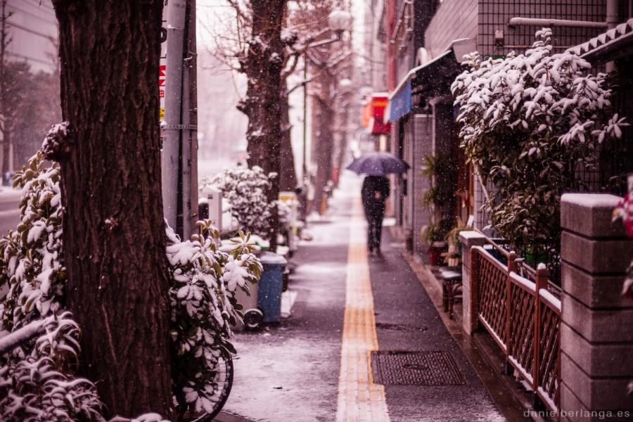 Primera gran nevada de 2014