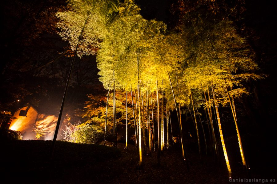 Rokugien nocturno